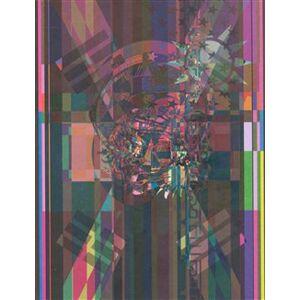 23. mezinárodní bienále grafického designu Brno 2008. 23rd international Biennial ofGraphic Design Brno 2008 - Marta Sylvestrová