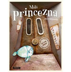 Malá princezna. Nejkrásnější slovenská kniha pro děti 2009 - Miloš Kopták, Ján Uličiansky