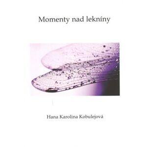 Momenty nad lekníny - Hana Karolina Kobulejová