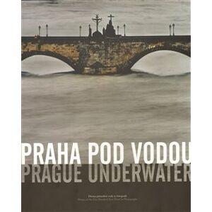 Praha pod vodou/Prague underwater. Drama pětisetleté vody ve fotografii/Drama of the Five Hundred Year Flood in Photographs