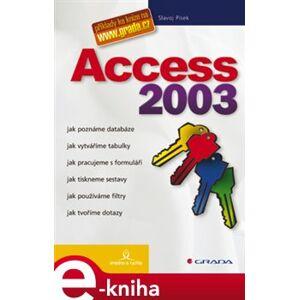 Access 2003. snadno a rychle - Slavoj Písek e-kniha