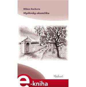 Myšlenky okamžiku - Milan Sochora e-kniha