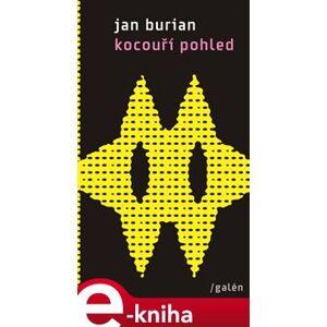 Kocouří pohled. a jiná vyprávění z tohoto světa (2012-2015) - Jan Burian e-kniha
