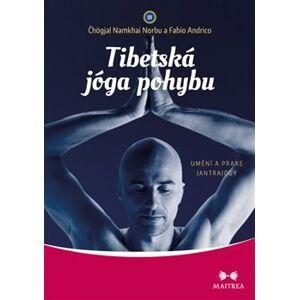Tibetská jóga pohybu. Umění a praxe jantrajógy - Fabio Andrico, Čhögjal Namkhai Norbu