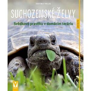 Suchozemské želvy. Svědkové pravěku v domácím teráriu - Hartmut Wilke