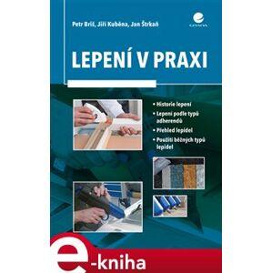Lepení v praxi - Briš Petr, Štrkaň Jan, Jiří Kuběna e-kniha