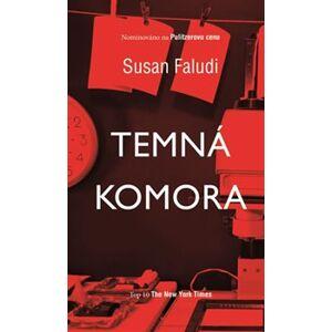 Temná komora - Susan Faludi