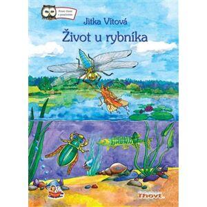 Život u rybníka - Jitka Vítová