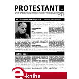Protestant 2019/01 e-kniha