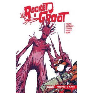 Rocket a Groot 1: Profíci v akci - Skottie Young
