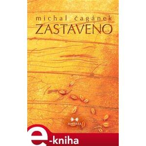 Zastaveno - Michal Čagánek e-kniha