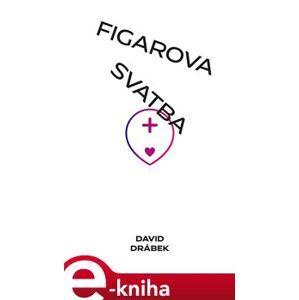 Figarova svatba: Andělé, šneci a lidé - David Drábek