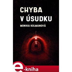 Chyba v úsudku - Monika Kolmanová