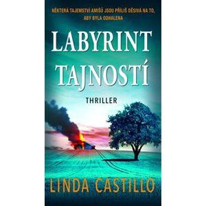 Labyrint tajností - Linda Castillo