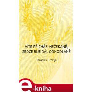 Vítr přichází nečekaně, srdce bije dál odhodlaně - Jaroslav Brož