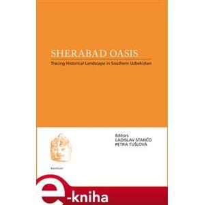 Sherabad Oasis. Tracing Historical Landscape in Southern Uzbekistan - Petra Tušloví, Ladislav Stančo e-kniha